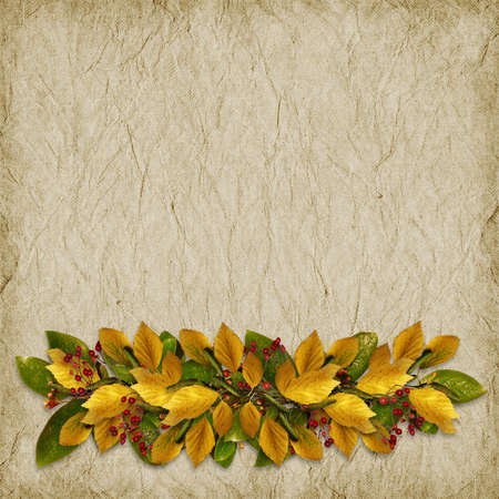 Card for the holiday  with autumn leaves on the abstract background  photo