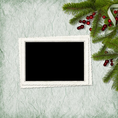 Card for the holiday with branches and berry on the abstract background photo