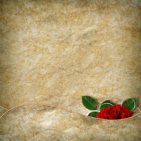 Vintage card for the holiday with red rose on the abstract background photo