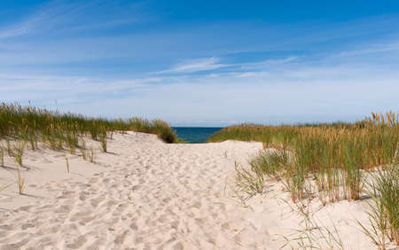 The path to the summer beach. Sandy beach trail leads to the sunny summer horizon of the Baltic Sea Reklamní fotografie