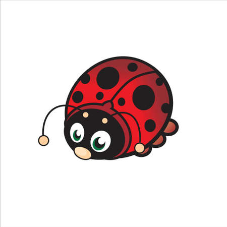 ladybug isolated on white background Stock Vector - 12247516