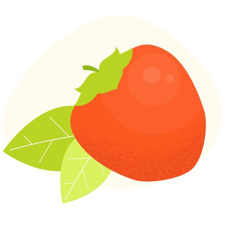 Persimmon vector icon. Kaki with leafs concept