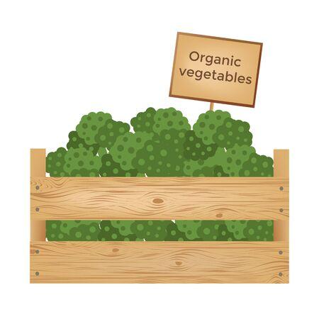 Boîte en bois de légumes biologiques frais. illustration vectorielle Banque d'images - 90043459