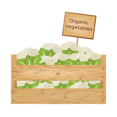 Coffret en bois de choux-fleurs. Légumes organiques. Illustration vectorielle Banque d'images - 90043456