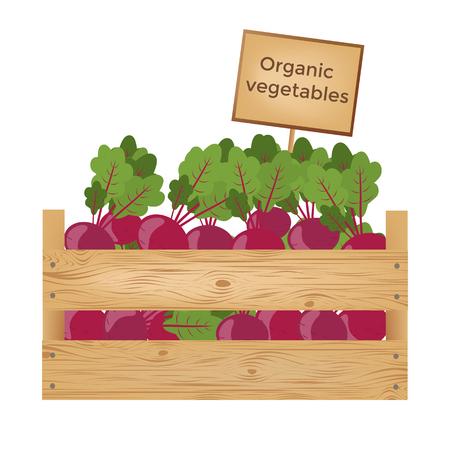 Boîtes en bois de betteraves. Légumes organiques. Illustration vectorielle Banque d'images - 90043454