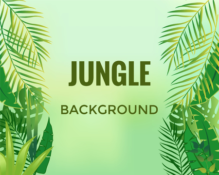 Jungle background. Trees and plants. Vector illustration