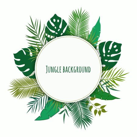 Jungle background. Vector illustration Reklamní fotografie - 90322022