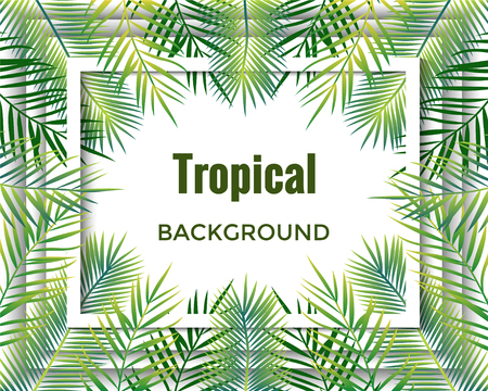 Jungle tropical  background. Vector illustration