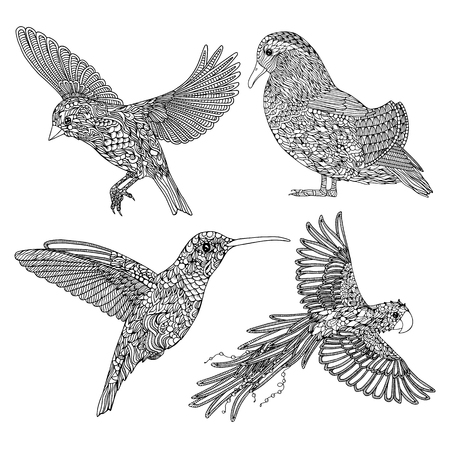 Collection of hand-drawn birds. Coloring page for adults Illustration
