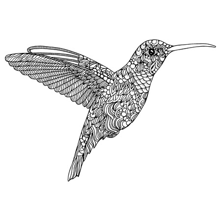 Hummingbird Coloring Page Stock Vector
