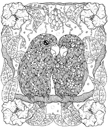 Dwergpapegaaien kleurplaat Stock Illustratie