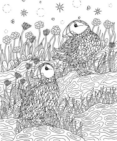 Macareux et fleurs vecteur de la page à colorier Banque d'images - 90826591