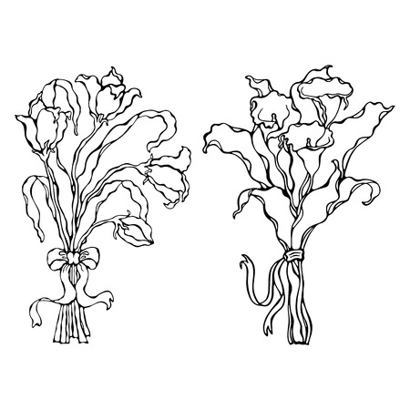 Lilies bouquet with a bow- vector illustration. Page for coloring