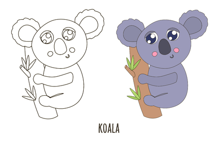 Black and white and colored cute koala vector illustration. Coloring page