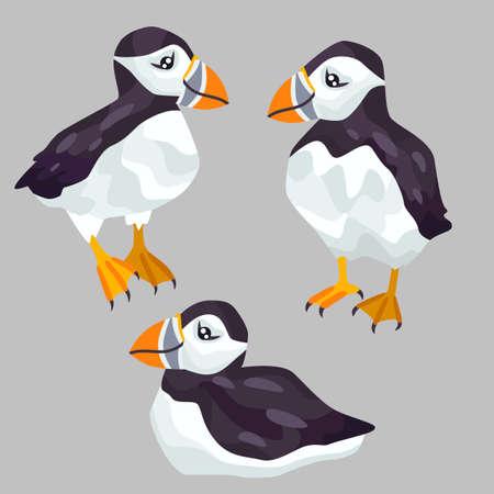 Cute puffins vector illustration. 版權商用圖片 - 167127942