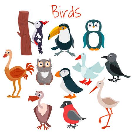 Set of cute cartoon birds. Vector flat illustration.