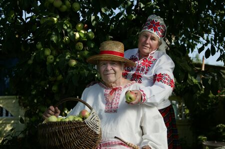 Elderly Slavic couple in embroidered shirts. Grandfather and woman in national costumes with a basket of apples. Belarusian pensioners with a harvest. Ukrainian old people in the garden.
