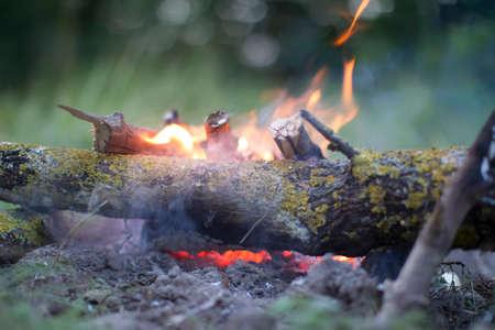 The fire. Log wood on fire. Stock fotó