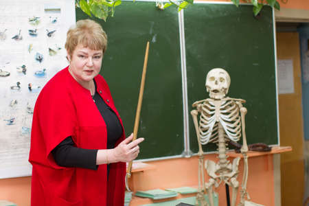 Belarus, Gomel, 25 April 2018. Secondary school is second. Biology lesson. The teacher tells the structure of the human skeleton. Teacher's work