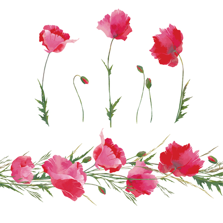 Vector red poppies flowers and floral poppies endless branch with watercolor effect. Elements for making floral garlands or frames and other summer design. Vettoriali