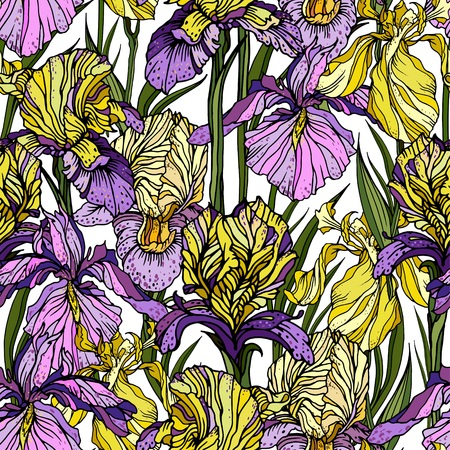 Seamless pattern with yellow and pink and violet iris flowers. For exotic summer design