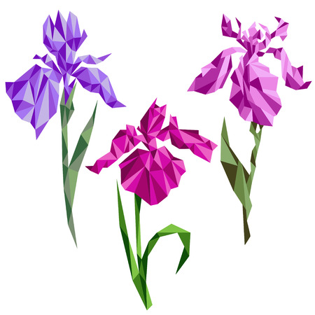 Iris flowers in poligonal style. Imitation of origami.