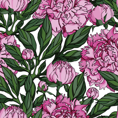 Vector seamless with pink peonies flowers and deep green leaves Illustration