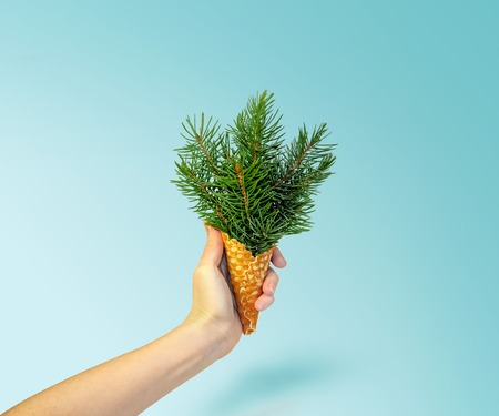 Christmas Tree Ice Cream in Woman Hand on Ligth Blue Background. New Year Concept. Minimal Holiday Composition.