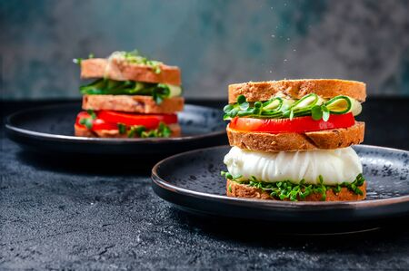 Homemade Healthy Sandwich with Wholegrain Bread, Poached Egg, Cucumber, Tomato and Micro Herbs Watercress Salad.