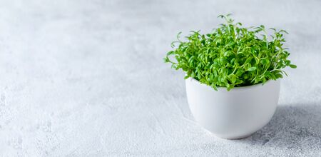 Close up Watercress in Little White Bowl on Light Background.