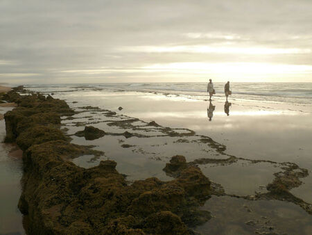 gentile: Africa. Mozambique. The Pervaded romantic gentile light matutinal landscape of coast seagoing reef with two people. Stock Photo