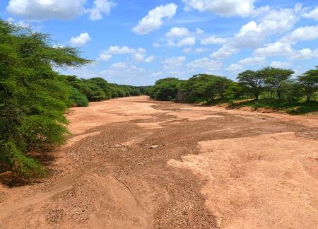 riverbed: Dry riverbed. Landscape nature. Africa, Kenya. Stock Photo