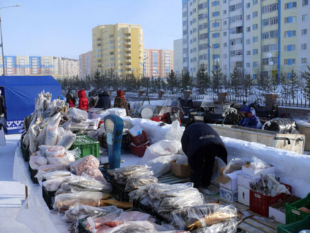 purchasers: Nadym, Russia - March 15, 2008: the national holiday - the Day of the reindeer herder in Nadym, Russia - March 15, 2008. Trading in meat and fish on the street.