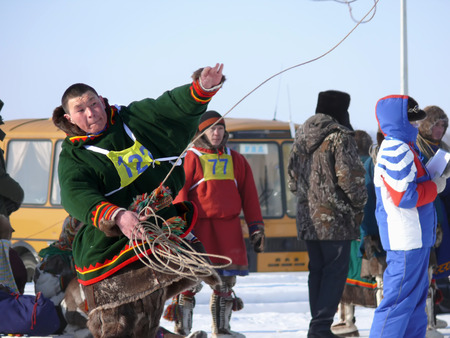 herder: Nadym, Russia - March 15, 2008: the national holiday - the Day of the reindeer herder in Nadym, Russia - March 15, 2008. Sports competitions. Unknown man throws lasso.