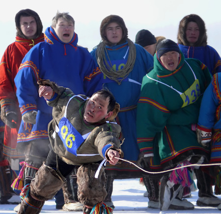 Nadym, Russia - March 15, 2008: the national holiday - the Day of the reindeer herder in Nadym, Russia - March 15, 2008. Sports competitions. Unknown man throws lasso.