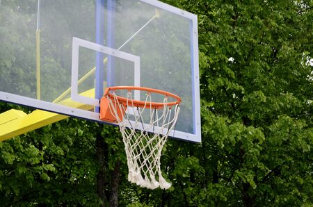 basketball carzine against the background of green trees in the summer in the park Imagens