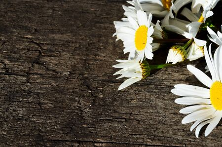 The daisies flowers are lined as a frame in the upper right corner on a wooden background with a copy space horizontal orientation