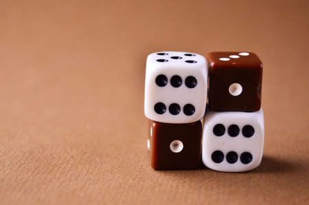 Playing dice white and brown close-up with copy space