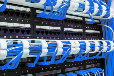 Close up of blue network cables connected to black patch panel