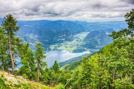 bohinj: Beautiful Lake Bohinj surrounded by mountains of Triglav national park. view from Vogel cable car station, Slovenia