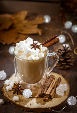 Hot coffee with milk in a glass with double walls with marshmallow, cinnamon stick and anise star. Brown, Selective focus