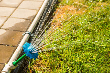 Automatic sprinklers for watering grass, flower-shaped. the lawn is watered in summer. convenient for home Stockfoto