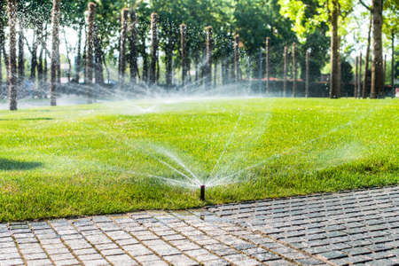 Automatic sprinklers for watering grass. the lawn is watered in summer. convenient for home. fresh greens Stockfoto