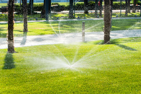 Automatic sprinklers for watering grass. the lawn is watered in summer. convenient for home Stockfoto