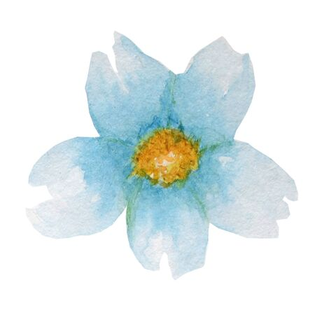 Beautiful bright blue watercolor flower. Isolated on white background.