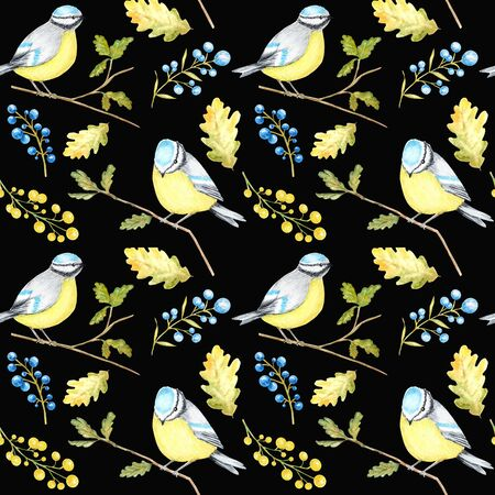 Watercolor Seamless pattern with Bird BlueTit sitting on the oak Branch, isolated on white background. Stock Photo