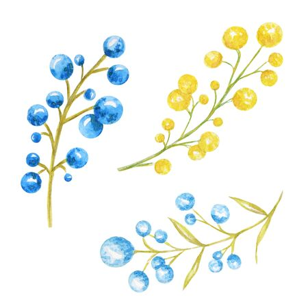 Autumn berries seasonal, nature berry, autumnal botanical isolated on a white background. Watercolor autumn element hand drawn illustration. 写真素材