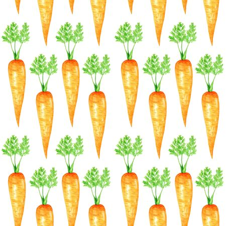 Seamless pattern Watercolor painted collection of orange carrot. Cartoon style Hand drawn fresh vegan food on white background. Fabric autumn texture
