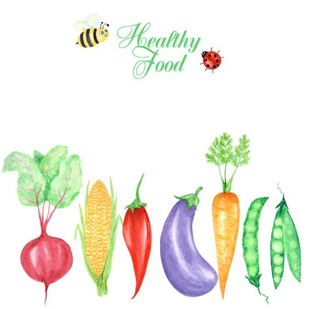 Watercolor painted of autumn vegetables and insects, ladybug and bee. Card, poster, banner concept. Hand drawn fresh healty vegan food on white background. Stock Photo
