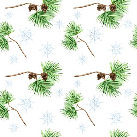 Seamless pattern of pine branches and cones, needles on white background,  hand draw, decorative botanical illustration for design, Christmas texture, fabric, paper 写真素材